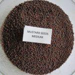 Mustard Medium (2)