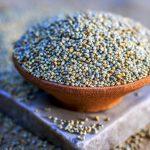 Green Millet Sortex (6)